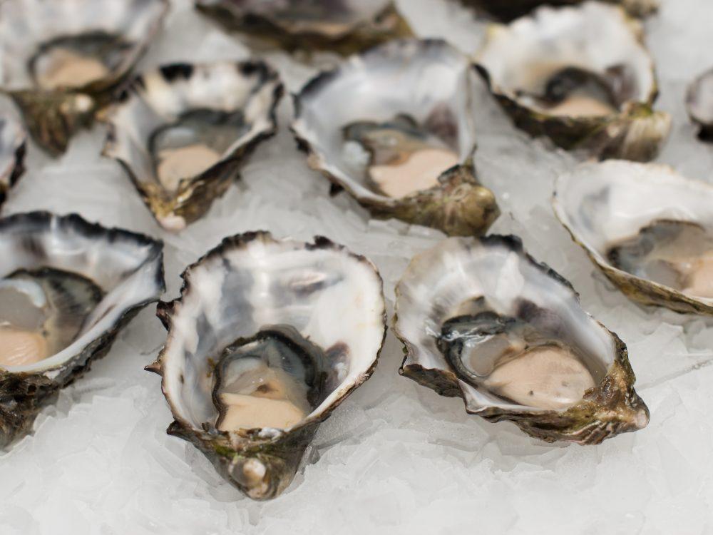 Hoe open je een oester?